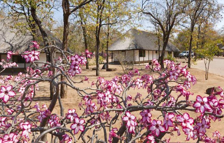 """<alt=""""getaway cottage shingwedzi camp kruger national park"""">"""